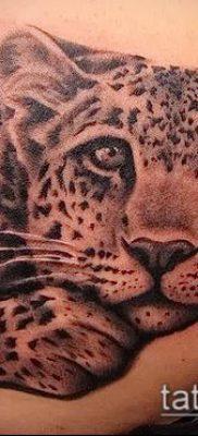 тату ирбис №308 – прикольный вариант рисунка, который успешно можно использовать для переделки и нанесения как тату ирбис на спине