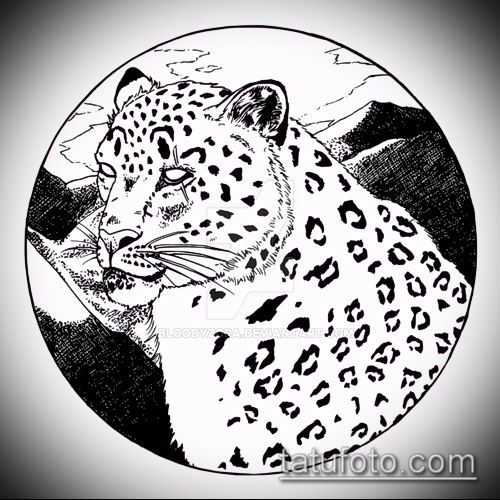 тату ирбис №57 - интересный вариант рисунка, который хорошо можно использовать для доработки и нанесения как тату ирбис снежный барс