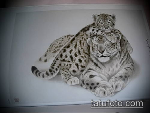 тату ирбис №125 - уникальный вариант рисунка, который успешно можно использовать для доработки и нанесения как тату ирбис динго