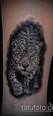 тату ирбис №246 – интересный вариант рисунка, который хорошо можно использовать для переделки и нанесения как тату ирбис динго