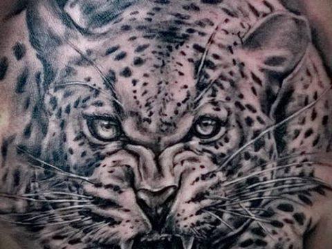тату ирбис №926 - интересный вариант рисунка, который легко можно использовать для переделки и нанесения как тату ирбис динго