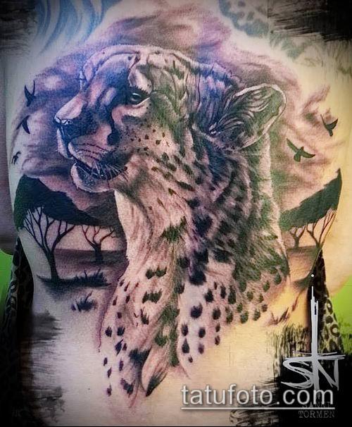 тату ирбис №19 - классный вариант рисунка, который успешно можно использовать для переделки и нанесения как тату ирбис динго
