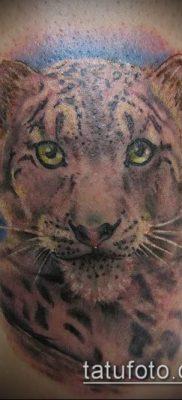 тату ирбис №60 – достойный вариант рисунка, который легко можно использовать для доработки и нанесения как тату ирбис динго