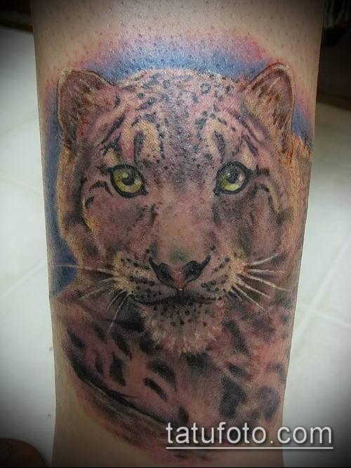тату ирбис №60 - достойный вариант рисунка, который легко можно использовать для доработки и нанесения как тату ирбис динго