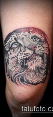 тату ирбис №834 – достойный вариант рисунка, который легко можно использовать для преобразования и нанесения как тату ирбис динго