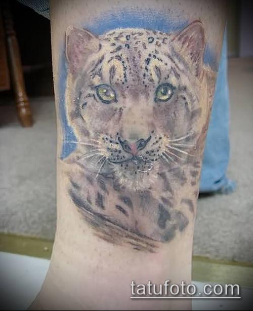 тату ирбис №605 - достойный вариант рисунка, который успешно можно использовать для переделки и нанесения как тату ирбис снежный барс