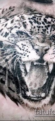 тату ирбис №349 – классный вариант рисунка, который удачно можно использовать для доработки и нанесения как тату ирбис на спине