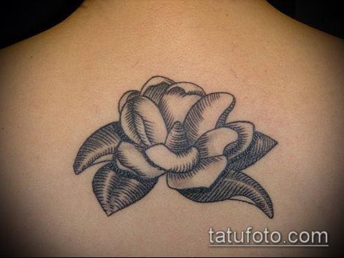 тату магнолия №167 - интересный вариант рисунка, который легко можно использовать для переработки и нанесения как Magnolia tattoo