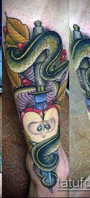 тату меч и змея №798 – интересный вариант рисунка, который успешно можно использовать для переделки и нанесения как Tattoo sword and snake