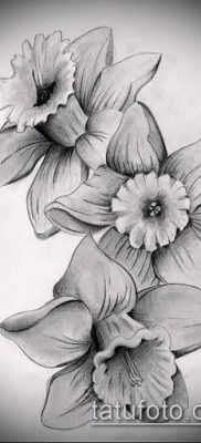 фото тату нарцисс (Narcissus Tattoo) (значение) – пример рисунка – 011 tatufoto.com