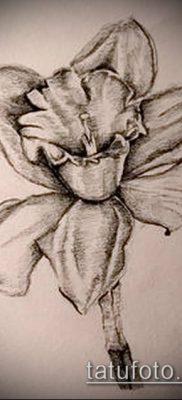 фото тату нарцисс (Narcissus Tattoo) (значение) – пример рисунка – 023 tatufoto.com