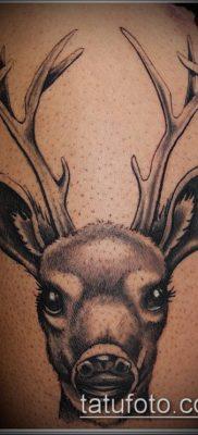 фото тату олень с рогами (tattoo) (значение) – пример рисунка – 002 tatufoto.com