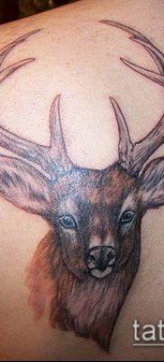 фото тату олень с рогами (tattoo) (значение) – пример рисунка – 003 tatufoto.com