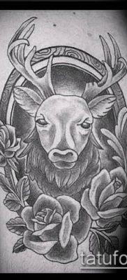 фото тату олень с рогами (tattoo) (значение) – пример рисунка – 006 tatufoto.com