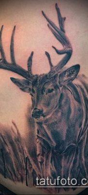 фото тату олень с рогами (tattoo) (значение) – пример рисунка – 013 tatufoto.com