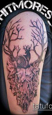 фото тату олень с рогами (tattoo) (значение) – пример рисунка – 017 tatufoto.com