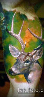 фото тату олень с рогами (tattoo) (значение) – пример рисунка – 021 tatufoto.com