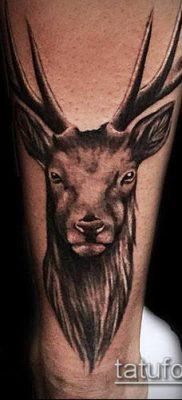 фото тату олень с рогами (tattoo) (значение) – пример рисунка – 025 tatufoto.com