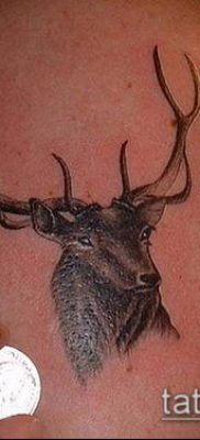 фото тату олень с рогами (tattoo) (значение) – пример рисунка – 038 tatufoto.com
