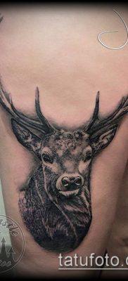 фото тату олень с рогами (tattoo) (значение) – пример рисунка – 041 tatufoto.com