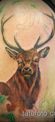 фото тату олень с рогами (tattoo) (значение) – пример рисунка – 050 tatufoto.com