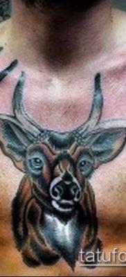 фото тату олень с рогами (tattoo) (значение) – пример рисунка – 058 tatufoto.com