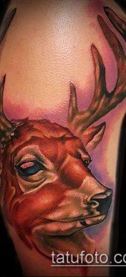 фото тату олень с рогами (tattoo) (значение) – пример рисунка – 063 tatufoto.com