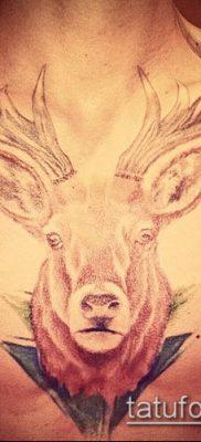 фото тату олень с рогами (tattoo) (значение) – пример рисунка – 067 tatufoto.com