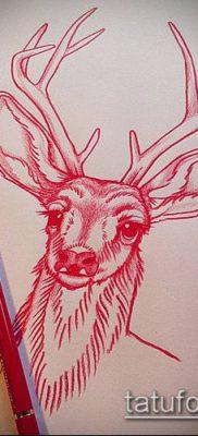 фото тату олень с рогами (tattoo) (значение) – пример рисунка – 074 tatufoto.com