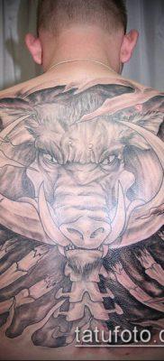 тату свинья №340 – эксклюзивный вариант рисунка, который легко можно использовать для переделки и нанесения как тату свинья и петух
