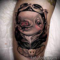Значение тату свинья