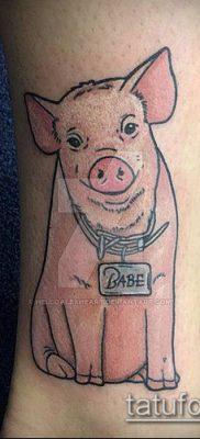 тату свинья №701 – уникальный вариант рисунка, который удачно можно использовать для переработки и нанесения как тату свинья и петух