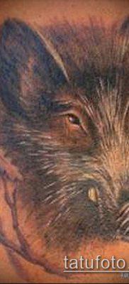 тату свинья №51 – уникальный вариант рисунка, который легко можно использовать для переработки и нанесения как тату свинья