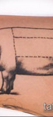 тату свинья №362 – прикольный вариант рисунка, который удачно можно использовать для преобразования и нанесения как тату свинья и петух