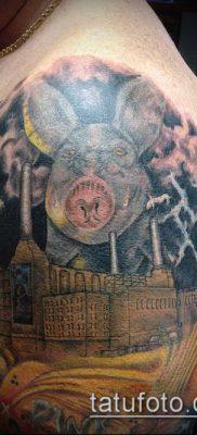тату свинья №179 – прикольный вариант рисунка, который легко можно использовать для переработки и нанесения как Pig tattoo