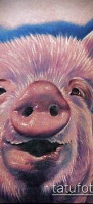 тату свинья №188 – уникальный вариант рисунка, который хорошо можно использовать для переработки и нанесения как тату свинья
