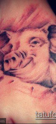 тату свинья №607 – эксклюзивный вариант рисунка, который удачно можно использовать для переделки и нанесения как тату свинья