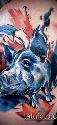 тату свинья №566 – уникальный вариант рисунка, который легко можно использовать для преобразования и нанесения как тату кабан и бык