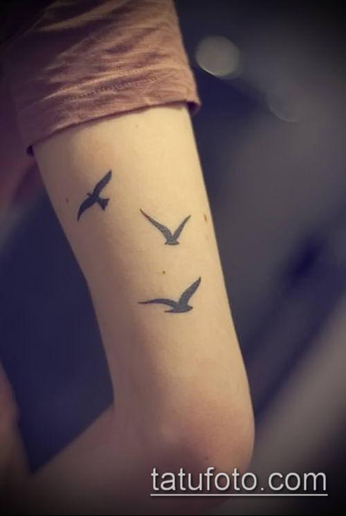 тату стая птиц №914 - крутой вариант рисунка, который хорошо можно использовать для доработки и нанесения как тату стая птиц на ключице