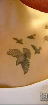 тату стая птиц №498 – уникальный вариант рисунка, который хорошо можно использовать для переделки и нанесения как тату стая птиц на лопатке