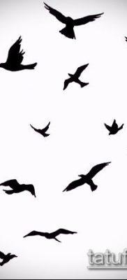 тату стая птиц №295 – уникальный вариант рисунка, который легко можно использовать для переработки и нанесения как тату стая птиц на ключице
