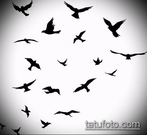 тату стая птиц №295 - уникальный вариант рисунка, который легко можно использовать для переработки и нанесения как тату стая птиц на ключице