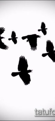тату стая птиц №823 – прикольный вариант рисунка, который успешно можно использовать для преобразования и нанесения как тату стая птиц на руке