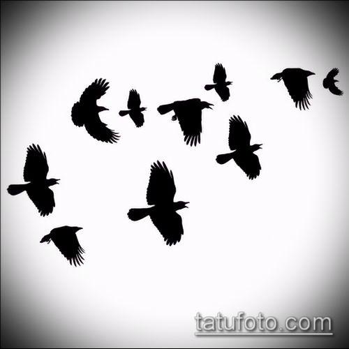 тату стая птиц №823 - прикольный вариант рисунка, который успешно можно использовать для преобразования и нанесения как тату стая птиц на руке