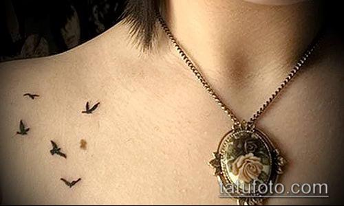 тату стая птиц №479 - крутой вариант рисунка, который удачно можно использовать для переделки и нанесения как тату стая птиц на спине