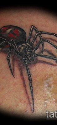 фото тату черная вдова (Tattoo) (значение) – пример рисунка – 013 tatufoto.com