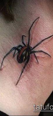 фото тату черная вдова (Tattoo) (значение) – пример рисунка – 032 tatufoto.com