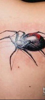 фото тату черная вдова (Tattoo) (значение) – пример рисунка – 035 tatufoto.com