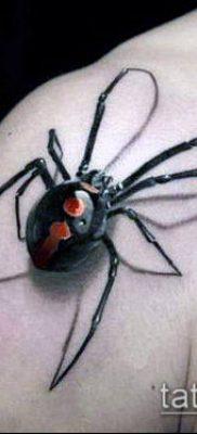 фото тату черная вдова (Tattoo) (значение) – пример рисунка – 039 tatufoto.com