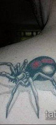 фото тату черная вдова (Tattoo) (значение) – пример рисунка – 052 tatufoto.com